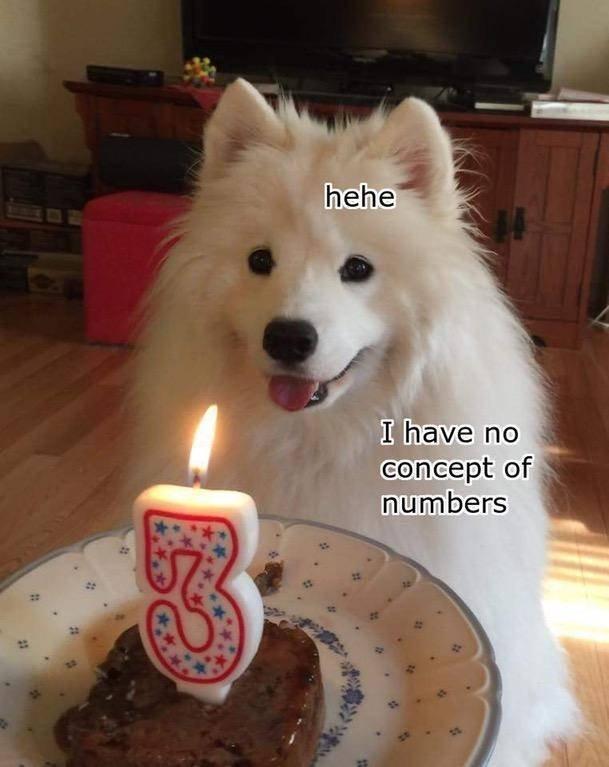 Wholesome Memes, part 12