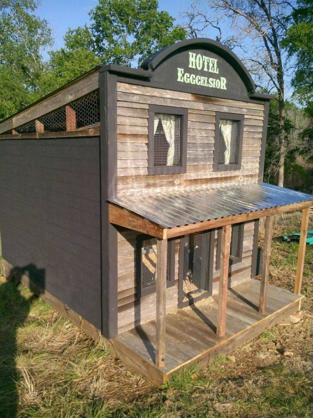 Creative Chicken Coops