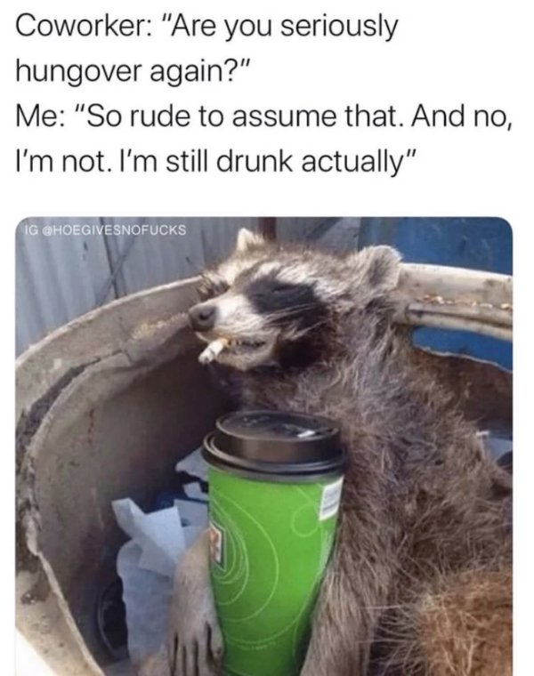 Alcohol Memes And Pictures, part 7