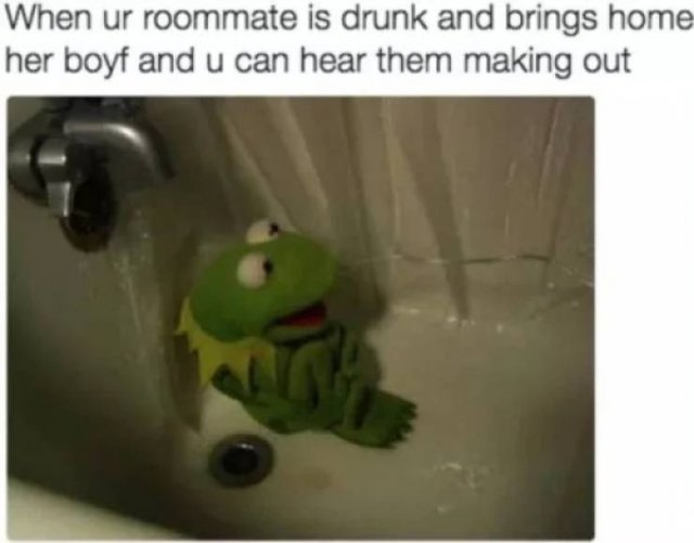 Memes About Roommates
