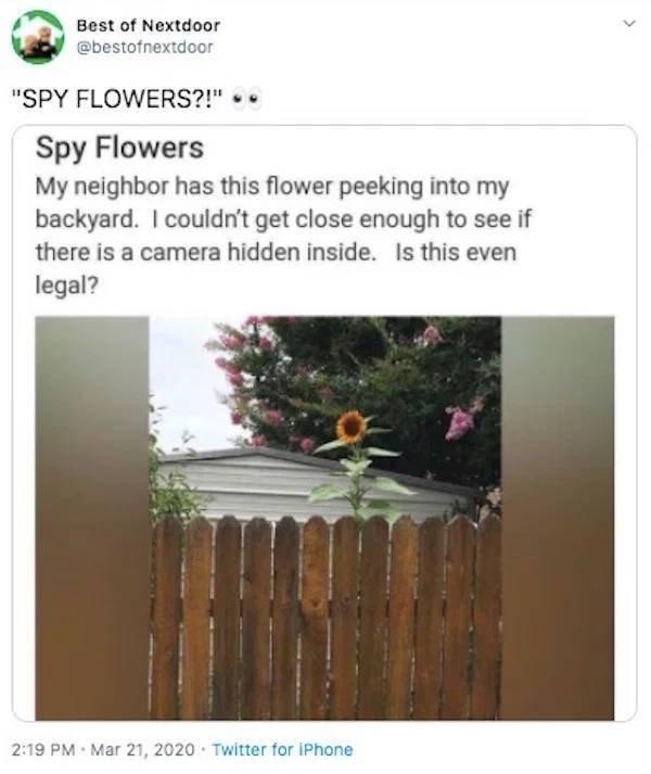 Neigbors Stories