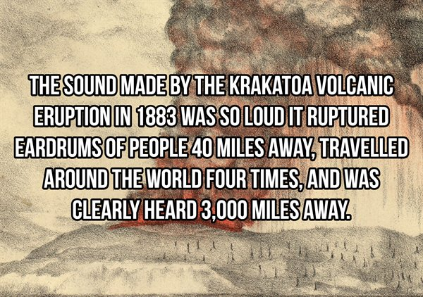 Interesting Facts, part 84