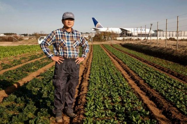 Japanese Farmer That Lives In The Middle Of An Airport