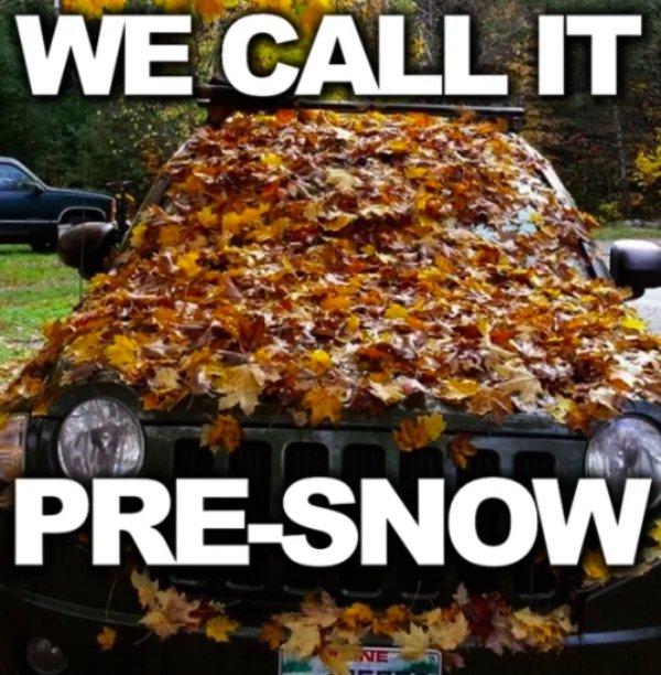 Autumn Memes