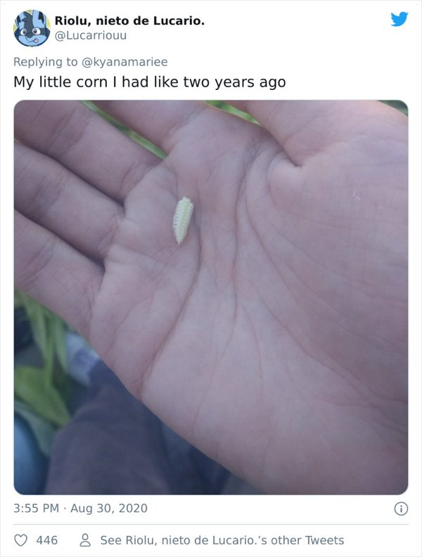 People Show Off Their Tiny Harvests