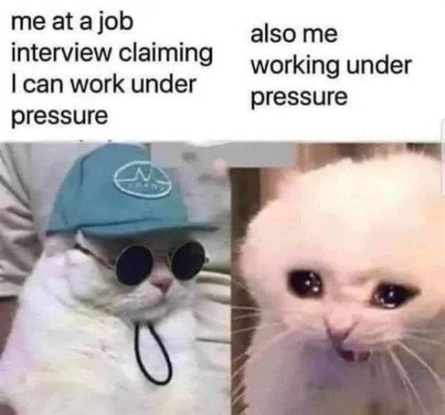 Random Funny Memes, part 82