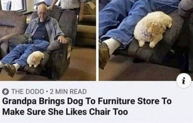 Wholesome Stories, part 24