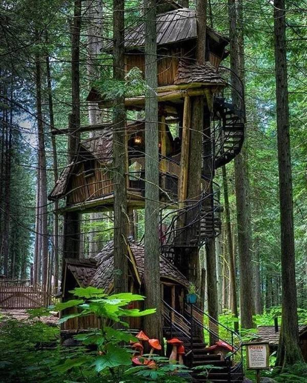 Charming Treehouses