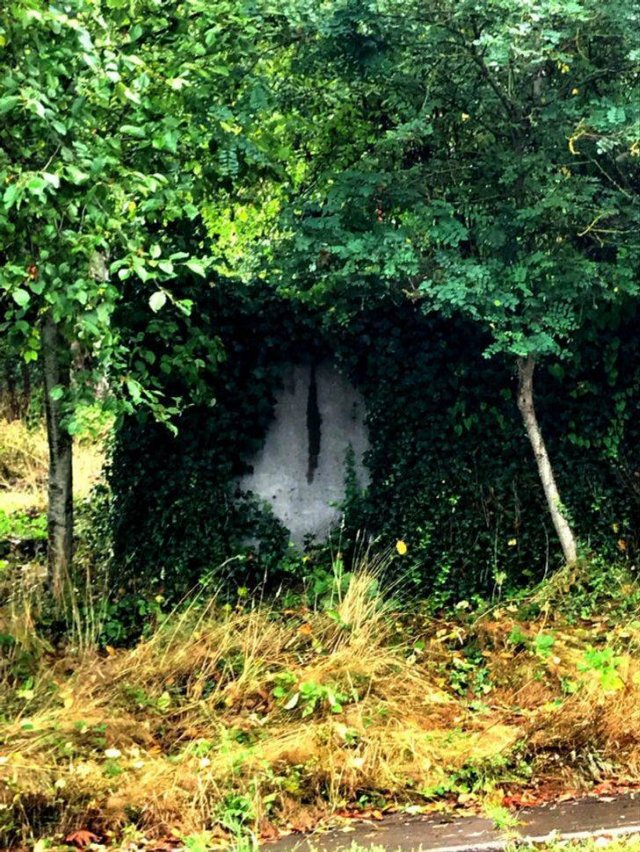 Amazing Nature, part 6