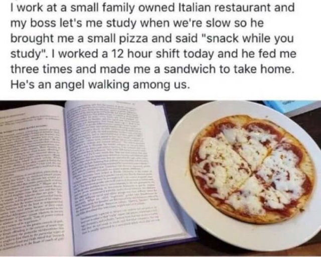 Wholesome Stories, part 25