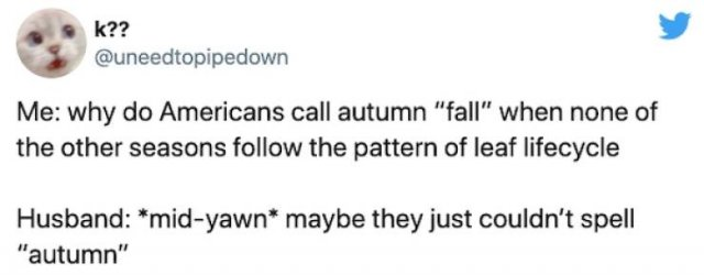 Non-Americans Questions About American Halloween