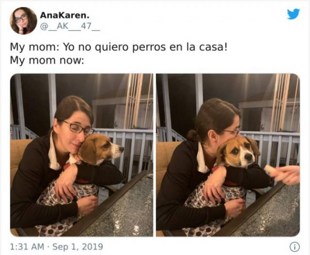 These Moms Refused To Have Dogs