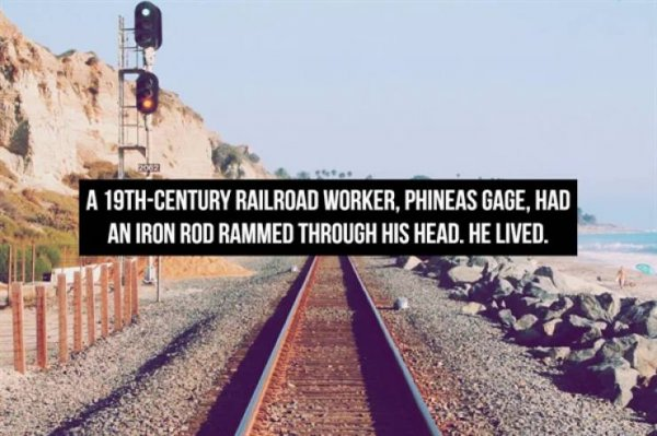 Interesting Facts, part 86