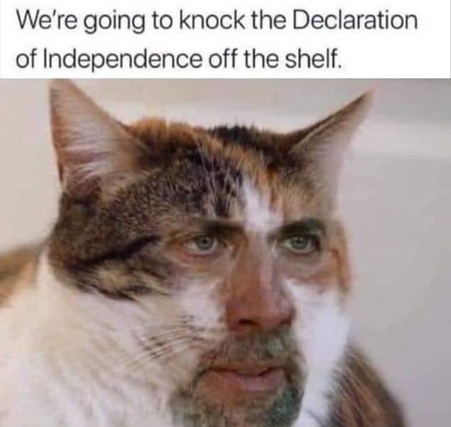 Hilarious Memes, part 17