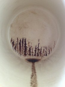Accidental Coffee Art