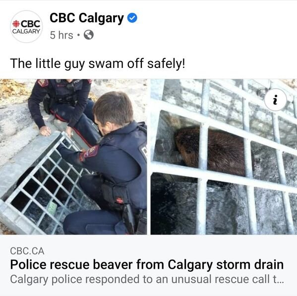 Only In Canada, part 27