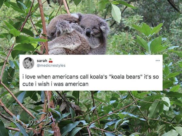 Non-Americans Tell About Things They Love In America