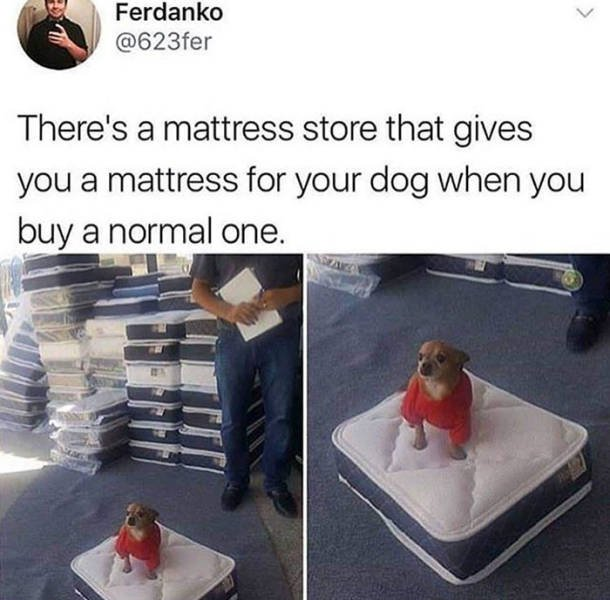 Wholesome Stories, part 29