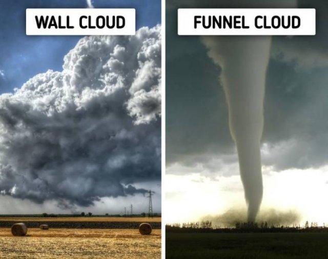 Nature Warning Signs