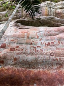 Prehistoric Paintings Were Discovered In Amazon Rainforest