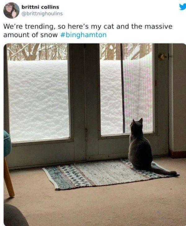 New York Snowy Apocalypse