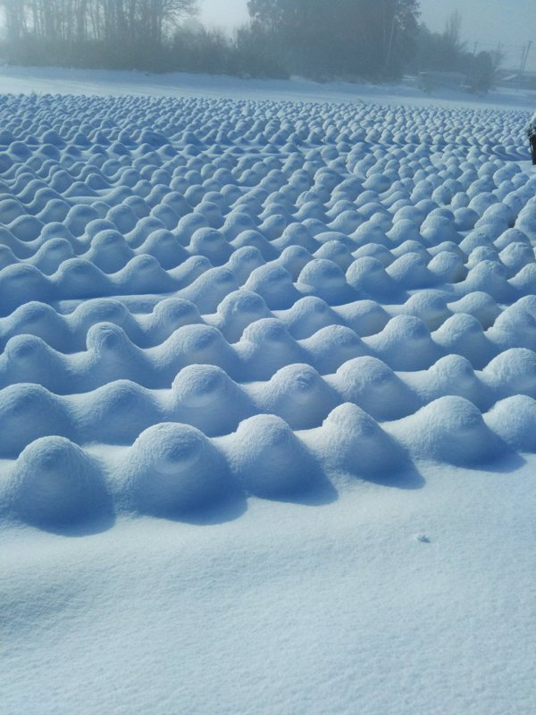 Perfect Snow Pictures