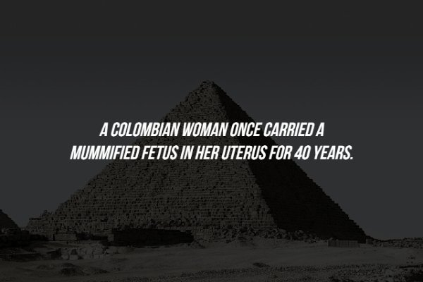 Scary Facts, part 54