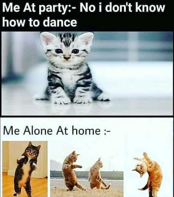 Introvert Memes, part 7