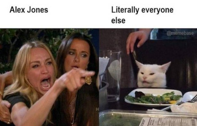 Woman Yelling At The Cat Memes