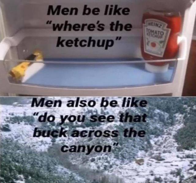 Random Funny Memes, part 136