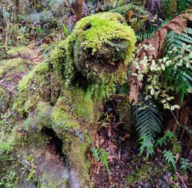 Beautiful Nature, part 11