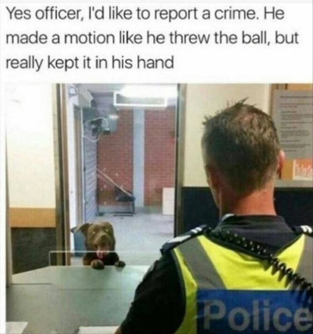 Random Funny Memes, part 141