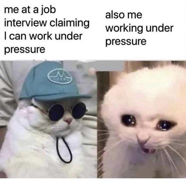 Hilarious Memes, part 37