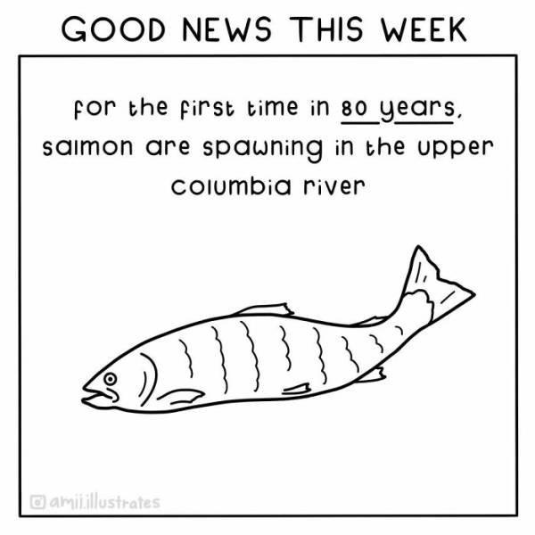Good News Illustrations