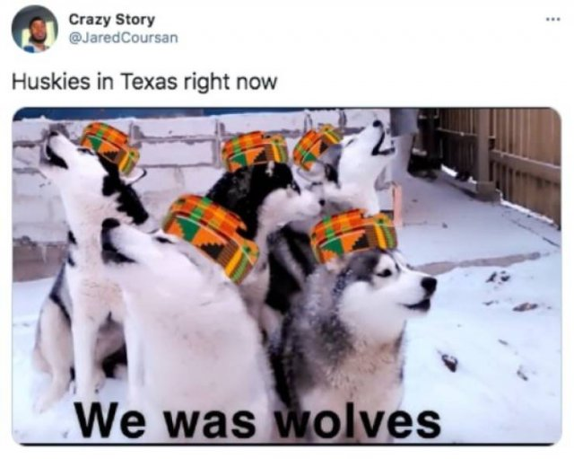 Memes And Tweets About Texas In Snow