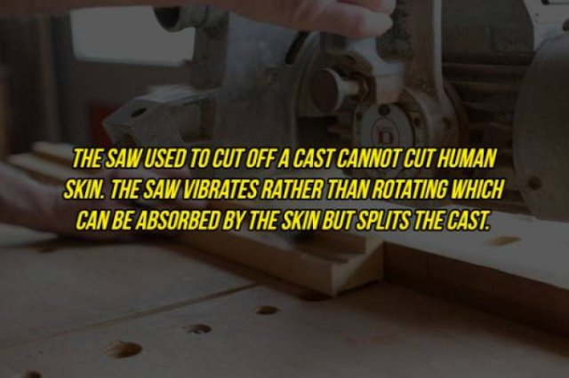 Interesting Facts, part 102