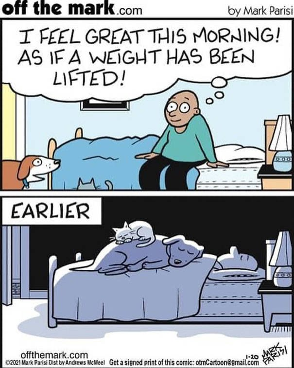 Smart And Funny Comics By 'Off The Mark'