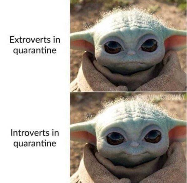 Introvert Memes, part 8