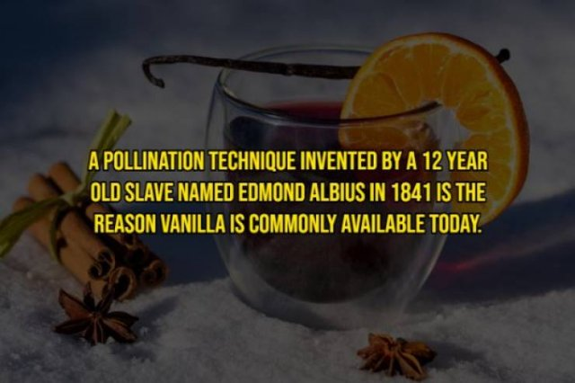 Intriguing Facts, part 2