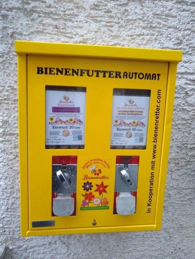 Life In Germany
