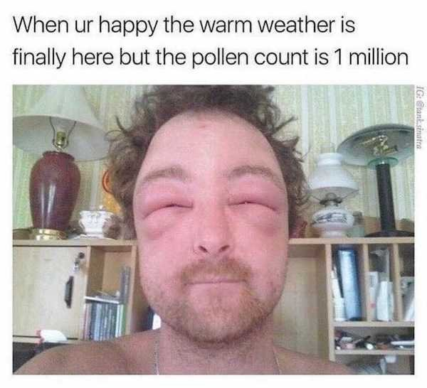 Memes For Allergic People