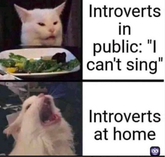 Introvert Memes And Tweets