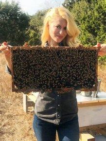 Texas Bee Queen