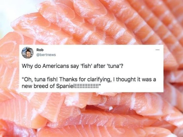 Why Do Americans Always Say Such things?