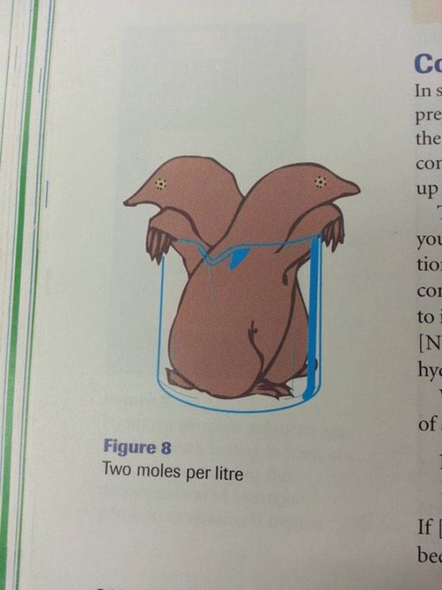 Strange And Funny Science Book Pages