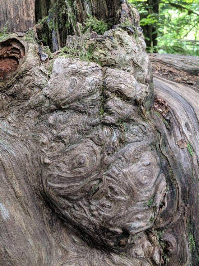 Beautiful Nature, part 12
