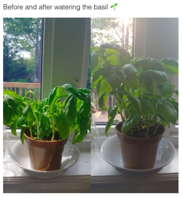 Before And After Photos, part 3