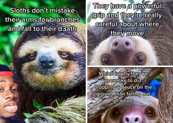Animal Myths Were Shattered