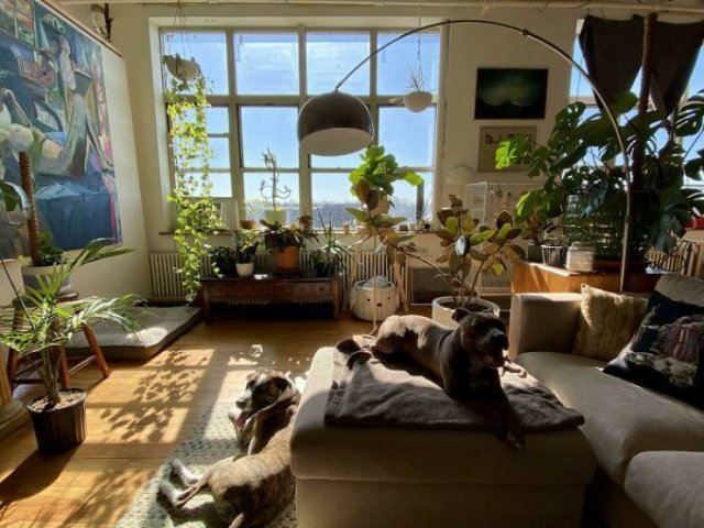 People Show Their Cozy Places