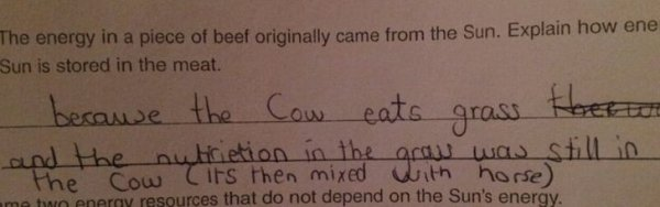 Kids Answer Test Questions